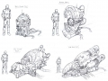 023 power_plants_sizes_sketches.jpg