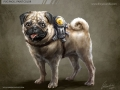 Pug pack_final_paint_color.jpg